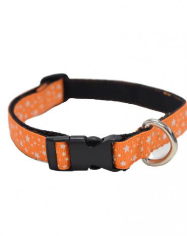 Orange Stars collar