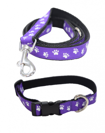 Paws on my heart collar and lead