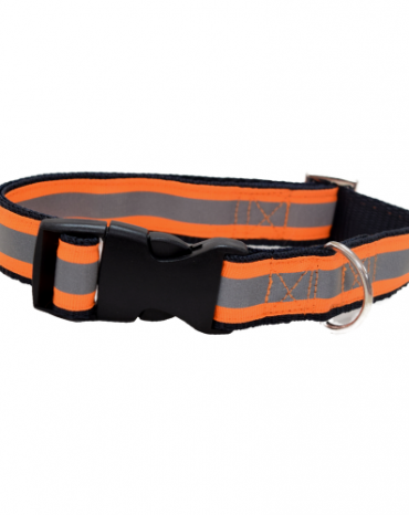 Reflective orange collar