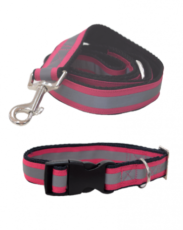 Reflective pink collar and lead
