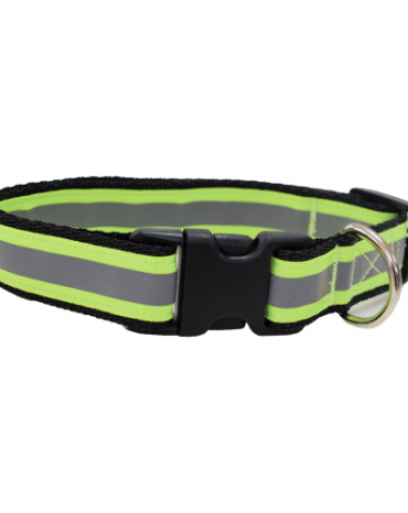 Reflective yellow collar