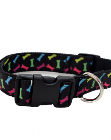 rainbow bones collar