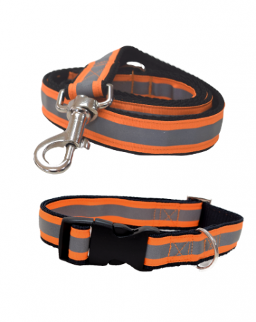 Reflective orange collar and lead