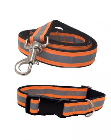 Reflective orange collar and lead
