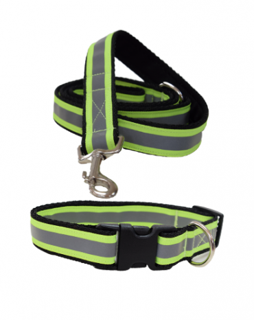 Reflective yellow collar and lead