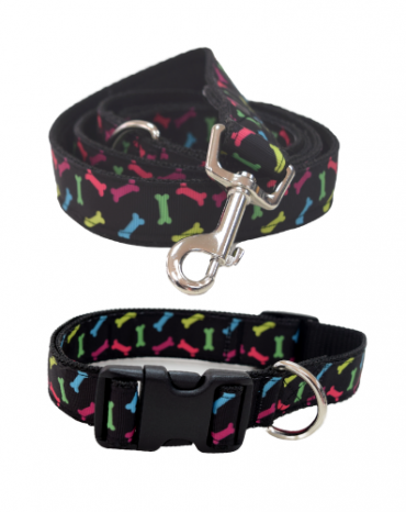 rainbow bones collar and lead