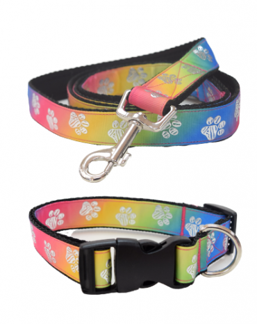 rainbow silver paws collar and lead