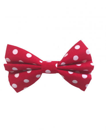 Red spots Bow Ties – small