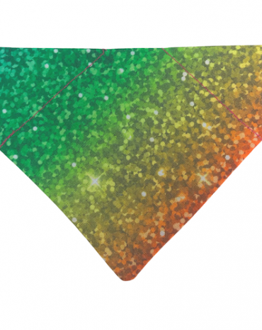 rainbow bandana copy